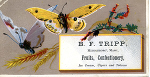 B. F. Tripp, fruits, confectionary, ice cream, cigars and tobacco
