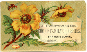 J. H. Witcomb & Son, choice family groceries
