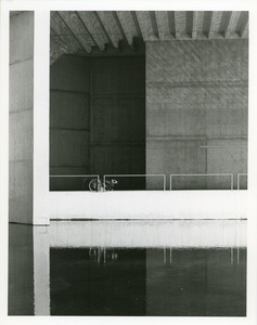 Bicycle and reflecting pool
