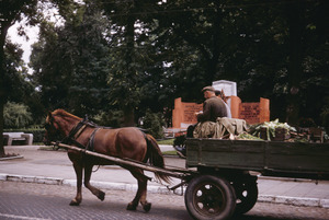 Farmer driving horse and wagon