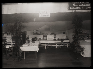 Agricultural education exhibit, Massachusetts Agricultural College
