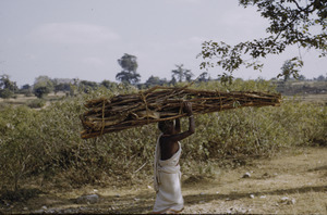 Woman carrying firewood near Ranchi