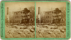 Mill River Flood Stereographs, 1874