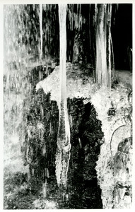 Double bottom icicle