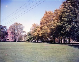 Lawn to the west of South College and path by Old Chapel