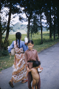 Young woman carrying things from the market