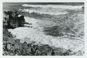 Breakers and rocky shore