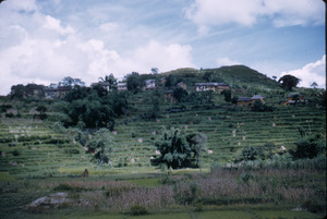 Terraced farming in Kathmandu Valley