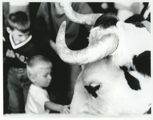 Bull with horns and boys petting
