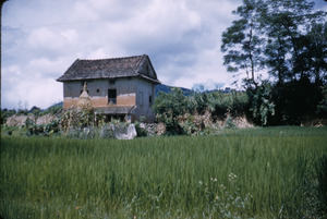 Typical farmhouse in Kathmandu Valley