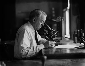 William F. Clapp, malacologist, Museum of Comparative Zoology, looking through a microscope