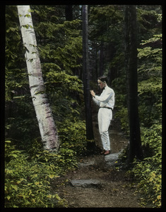 Petticoat Hill (Waugh's son examining black birch in the woods)