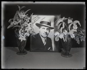 Walter Winchell with orchid display: portrait of Winchell set between orchids (Dendrobium sp. and Cattleya labiata, l. to r.)