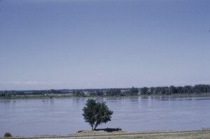 The Danube from Banat