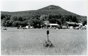 Gray property farm buildings