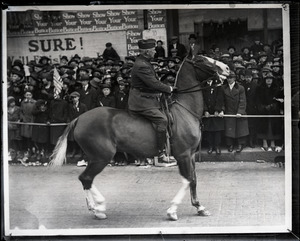 Maj. Gen. Clarence R. Edwards on horseback in welcome home parade for Yankee Division