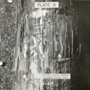 Plate 5. License plate imprint in wood utility pole.