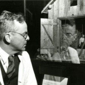 Alan R. Moritz with Barn Nutshell Study of Unexplained Death, circa 1948.