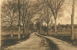 Campus Views, Roads and Walks - Postcards