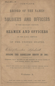 Civil War Soldiers and Sailors