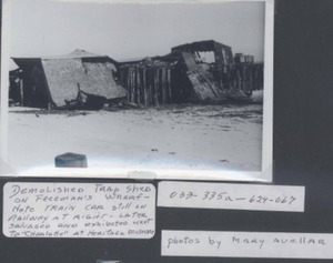Freeman's Wharf Trap Shed Demolition ,1975-Photograph