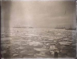 Ice in the Harbor