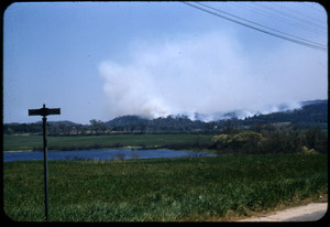 Forest fire, Plymouth, Mass.