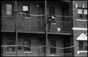Man looking at a cat caught in the railing of fire escape on an old apartment house