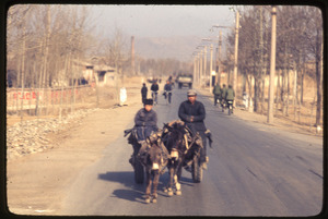 General Petrochemical Works -- donkey and burro pulling cart with man and boy