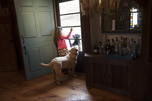 Sheffield House: Eva, daughter of Martin Canellakis and Faith Cromas, with her dog Poppy, looking through the front door screen, Sheffield, Mass.