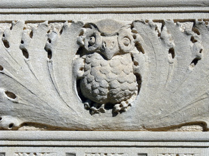 Dickinson Memorial Library: detail of owl carved in frieze