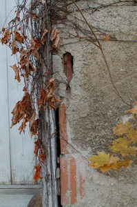 Eroded stucco next to entrance to the Cow Barn
