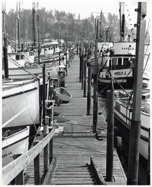 Dock likely in Yaquina Bay