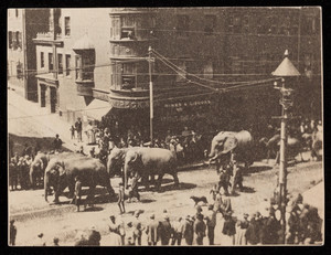 Circus parade on Charles Street, seen from window