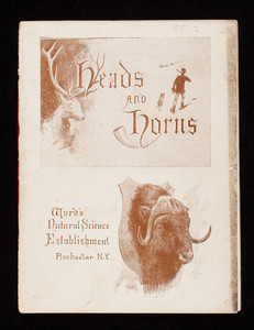 Heads and horns, Ward's Natural Science Establishment, Rochester, New York