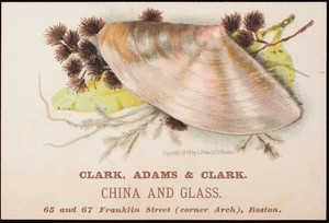 Trade card, Clark, Adams & Clark, china and glass, 75 and 67 Franklin Street, corner Arch, Boston, Mass.