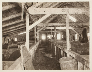 Piggery, interior, Long Island, Boston Harbor, Boston, Mass.