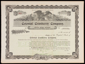 Colonial Cranberry Company capital stock certificate