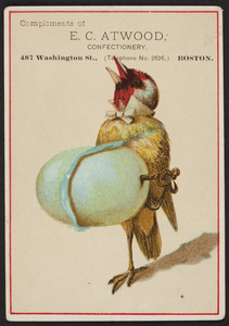 Trade card for E.C. Atwood, confectionery, 487 Washington Street, Boston, Mass., undated