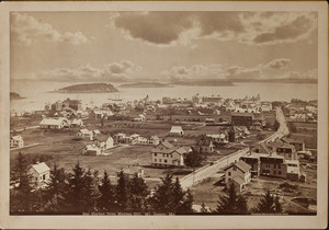 Bar Harbor from Malden Hill, Mt. Desert, Maine, 1882.