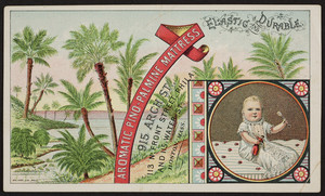 Trade cards for the Aromatic Pino-Palmine Mattress, 915 Arch Street, 113 North Front Street, Philladelphia, Pennsylvania and 115 Water Street, Boston, Mass., undated