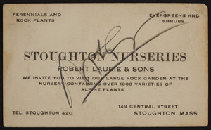 Trade card for Stoughton Nurseries, Robert Laurie & Sons, 149 Central Street, Stoughton, Mass, 1920-1940