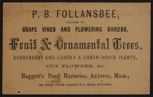 Trade card for P.B. Follansbee, dealer in fruit and ornamental trees, Haggett's Pond Nurseries, Andover, Mass., undated