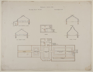 Overall first floor and cellar plans and sections of rose and carnation houses, violet pit, cool greenhouse, vinery, and plant house, unsigned, undated
