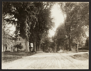 Exterior view of the Nims and Frary Houses, Deerfield Street, Deerfield, Mass., 1880s