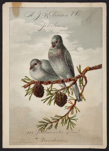 Trade card for A.J. Robinson & Co., jewelers, 223 Westminster Street, Providence, Rhode Island, 1878