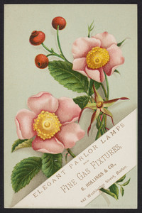 Trade card for R. Hollings & Co., elegant parlor lamps and fine gas fixtures, 547 Washington Street, Boston, Mass., 1878