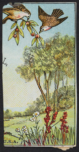 Trade card for Dr. J.C. Ayer & Co., druggists and dealers in medicines, Lowell, Mass., undated