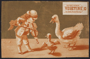 Trade card for Vegetine, the great blood purifier, H.R. Stevens, No. 464 Broadway, Boston, Mass., 1878