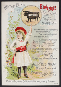 Trade card for Bovinine, the great tonic and restorative fluid food, The J.P. Bush Mfg. Co., Chicago and New York, 1885